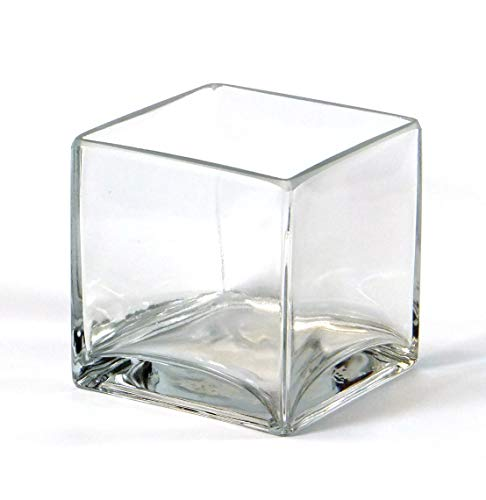 ar Square Glass Vase - Cube 4 Inch 4