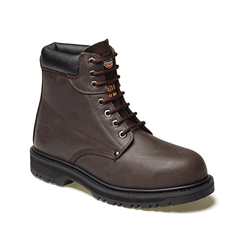 Dickies Cleveland Honey Safety Boot Size 9 (43) ehgqS1f9y