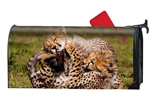 MALBX Animal Cheetah Cats Halloween Kitten Magnetic Mailbox Cover O'Lantern Holiday ()