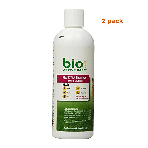 (Bio Spot Active Care F&T Shampoo Cats and Kittens 12 oz, Pack of 2 )