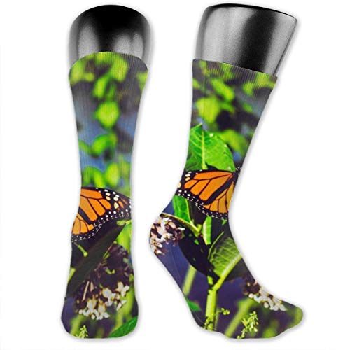 BRECKSUCH Monarch Butterfly Bright Patterns Unisex Compression Socks Sports 3D Printed Stocking Running&Fitness Thich-high Long Length Socks