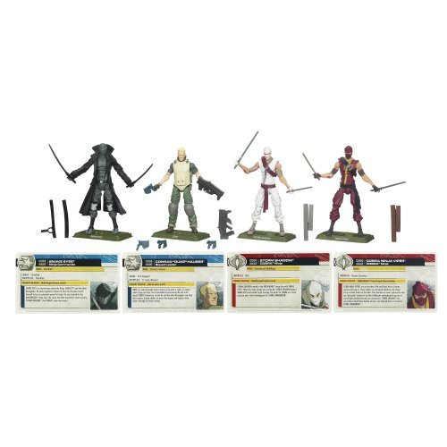 Gi Joe Ninjas (G.I. Joe G.I. Joe Renegades Pack)