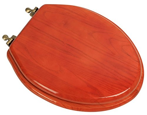 Bath Décor 5F1E2-15AB Elongated Toilet Seat in Traditional Design American Red Oak with Antique Brass Metal Hinges