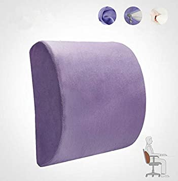 Relieve Back Pain Pillow Suitable for Office Chair and Car Seats-Pack of 2,Dark Blue Ecloud Shop Back Cushion Memory Foam Lumbar Support Pad with Adjustable Strap
