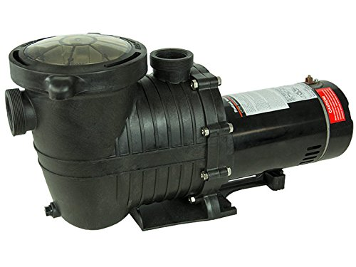 Mighty Niagara .75 HP In-Ground Single Speed Swimming Pool Pump 115V (3/4 Hp Single Speed Pump)