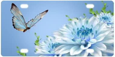 LICENSE PLATE FLOWERS BLUE BUTTERFLY AUTO TAG