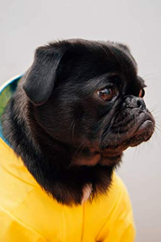 - Pug dot grid journal: Blank dotted grid pug dog journal: Pug in yellow jacket