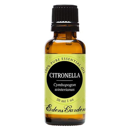 Citronella 100% Pure Therapeutic Grade Essential Oil by Edens Garden- 30 ml