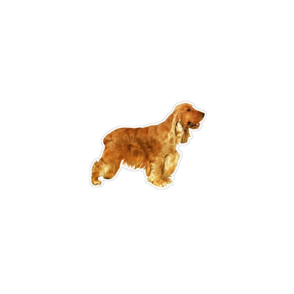 ENGLISH COCKER SPANIEL   Dog Decal   sticker car got