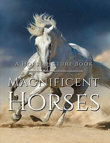The Best Horse Picture Collection You Can Get Horses are truly one of the most stunning and captivating animals on the planet, known for the regal appearance and demeanor, irresistibly beautiful and alluring. And this beautiful book ca...