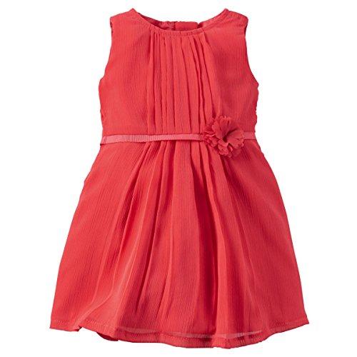 Carters Girls Pleated Chiffon Plume Dress