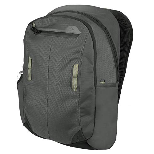 41zVQ7zyPzL - Travelon Anti-Theft Active Daypack, Charcoal
