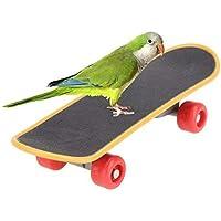 Li-lyBird Mini Training Stents en Plastique pour Skateboard Scrub Scooter Skate Boarding utile et Pratique