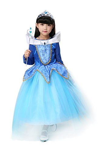 YMING Girls Blue Birthday Party Dress Up Halloween Sleeping Beauty Costume 2-3T (Halloween Costume Ideas For Toddlers)
