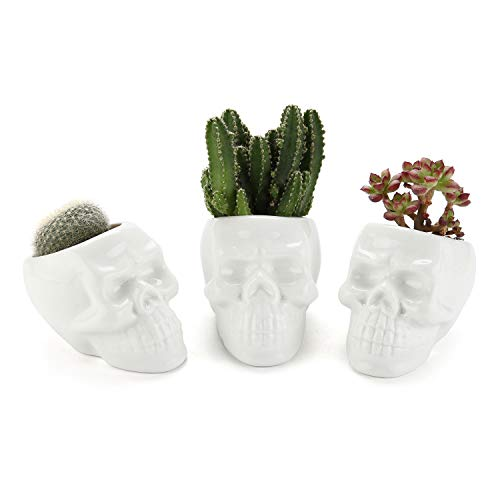 T4U White Ceramic Skull Shaped Succulent Planter Pots Set of 3, Cute Cactus Plant Pot Creative Pen Pencil Holder for Home Office Desk Decoration Birthday Wedding Christmas Gift]()