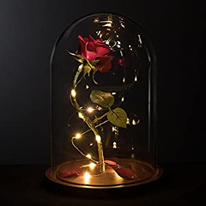 Life-Sized 13″ Enchanted Rose that Lasts Forever in Glass Dome Inspired By Disney Beauty and the Beast Belle by MagicPrincessWhitney Magic Princess Whitney
