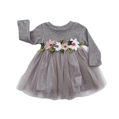 Baby Dress (Toddler Kids Girls Fall Jersey Dress Long Sleeve Floral Tulle Cap Tutu Dresses Outfit (18-24months, Grey))