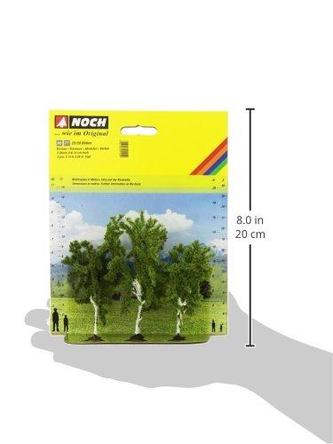 Review Noch 25120 Birch Tree
