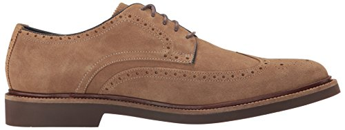 Cole Haan Hombres Monroe Wing Ox Ii Oxford Transient
