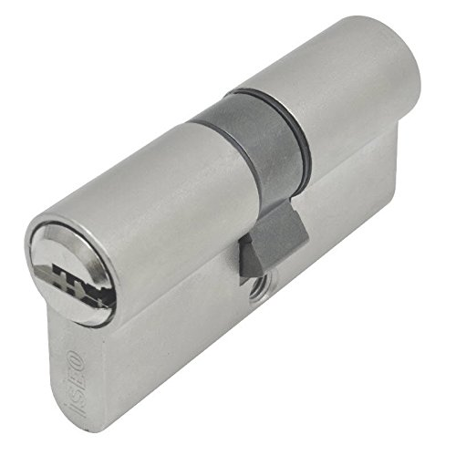 Iseo R6-Serrure de sécurité longue came (nickel 30 cm x 40 mm) 880930409..5