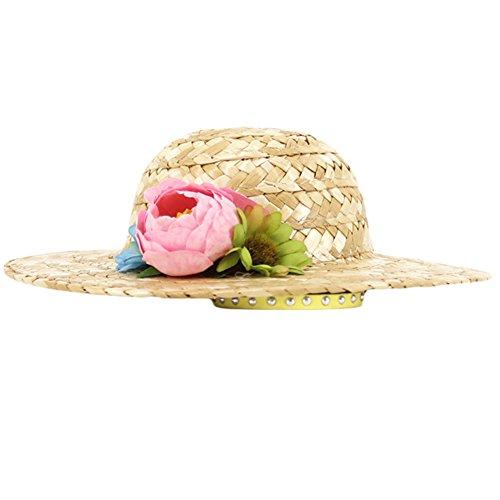 Wildgirl Cute Pet Dog Cat Sunhat Accessory Straw Plaited Cap Hat (L, Big Flower)