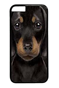 Case For Ipod Touch 5 Cover Case, Case For Ipod Touch 5 Cover -Dachshund Puppy PC Hard Plastic Case For Ipod Touch 5 Cover Black