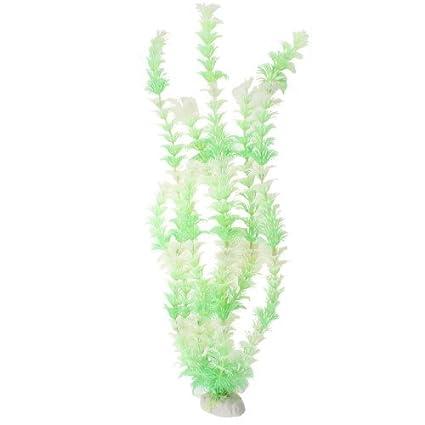 Amazon.com : eDealMax acuario de agua de la hierba/planta Decoración 16, 5 pulgadas, Verde : Pet Supplies