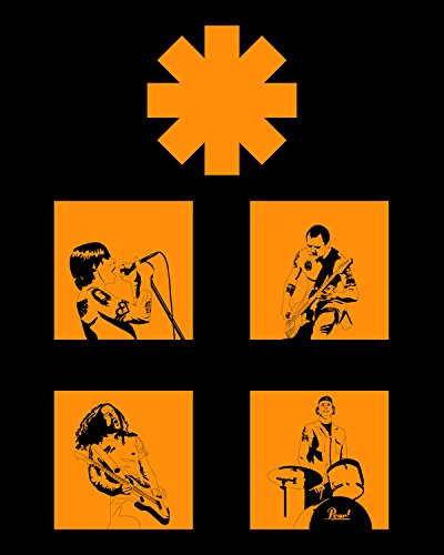Red Hot Chili Peppers Band Concert Poster Home Decor #4 16x20 Inches