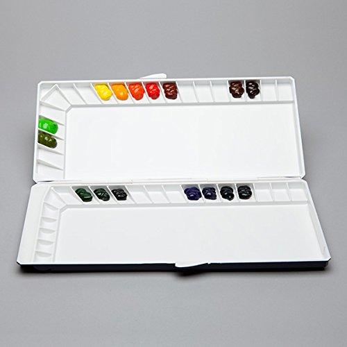 シルバーナノパレット 40 colors (water color silver nano palette) [ 水彩パレット 専門家用 プロ用 スケッチ旅行 アーティスト用 画材 絵画 水彩画 透明水彩絵具 透明 水彩絵の具 えのぐ パレット ]