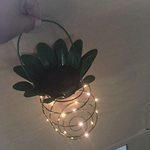 Solaires Décor Chemin Ananas Ledmomo Extérieur Lumières Jardin QCoExrWdeB
