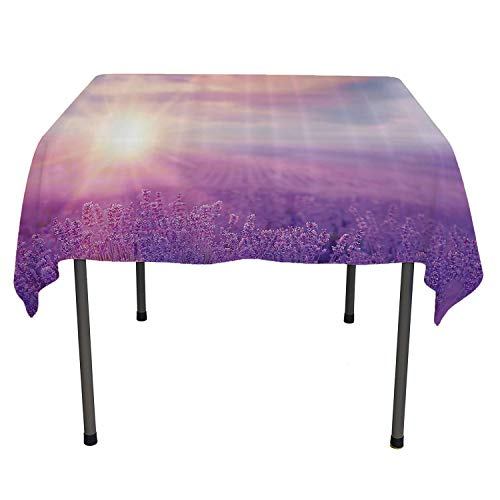 All of better Nature Decor Dining Table Cover Sunset Horizon Over Lavender Field in French Provence Floral Rural Picture Image Violet Outdoor Tablecloth Waterproof Spring/Summer/Party/Picnic 70 by 70 ()