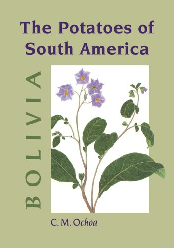 The Potatoes of South America: Bolivia (Homes For Sale In Bolivia South America)