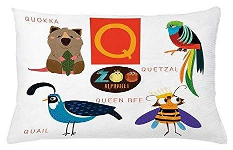 King65irginia ABC - Funda de cojín para niños, diseño de ...