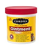 Product review for Corona Ointment 14 oz., jar