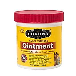 Corona  Ointment for Horses   Lanolin-Based Formula Helps Sooth Irritation   14 Ounces