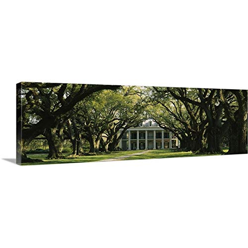 (Solid-Faced Canvas Print Wall Art Print Entitled Oak Alley Plantation LA)