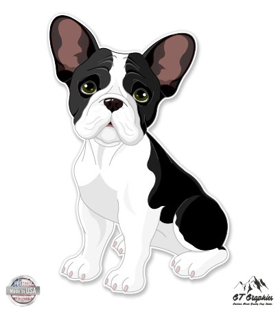 - French Bulldog Cute Puppy - 5