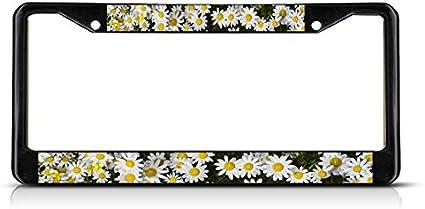 Fastasticdeals Texas Blue Bonnet Texas Flower License Plate Frame Tag Holder Cover