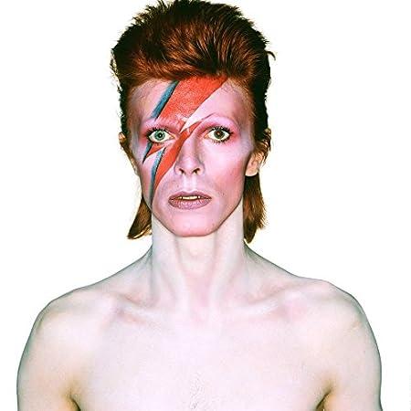 David Bowie (14x14 inch, 35x35 cm) Silk Poster Seta Manifesto PJ12-C69F Wall Station