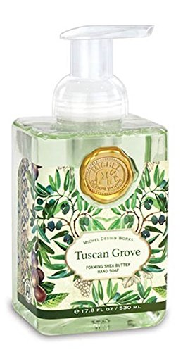 Amazoncom Michel Design Works Foaming Hand Soap Tuscan Grove