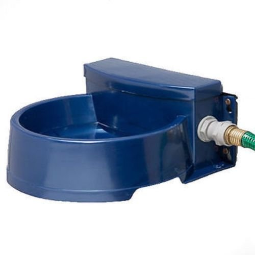 automatic water bowl for chickens - 5