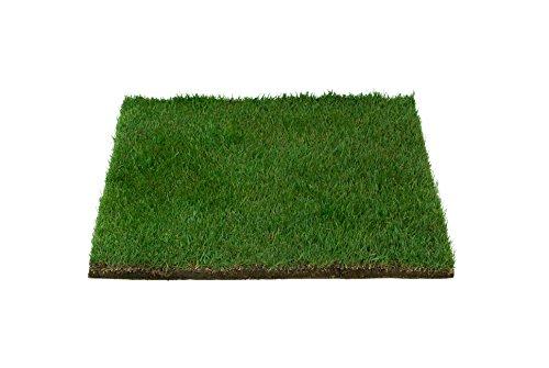 (Patio Pet Life Farm Fresh Pet Grass, Small)