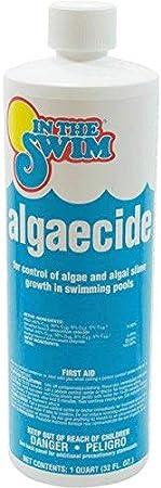 In The Swim Swimming Pool Algaecide - 1 Quart