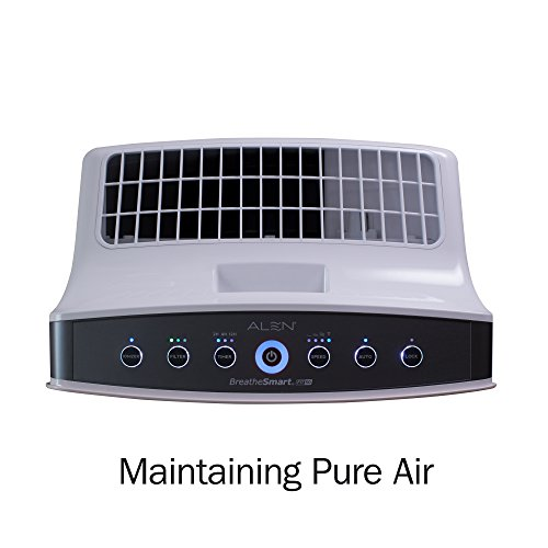 Air Purifiers For Allergies Do They Really Work