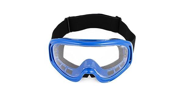 Amazon.com : eDealMax Marco de plástico transparente de la lente del esquí de la motocicleta Gafas Azul : Sports & Outdoors