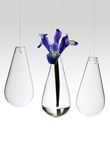 Serene Spaces Living Teardrop Hanging Bud Vases, Set of 3, SIze - 5 1/2in High x 2 1/2in Diameter ()