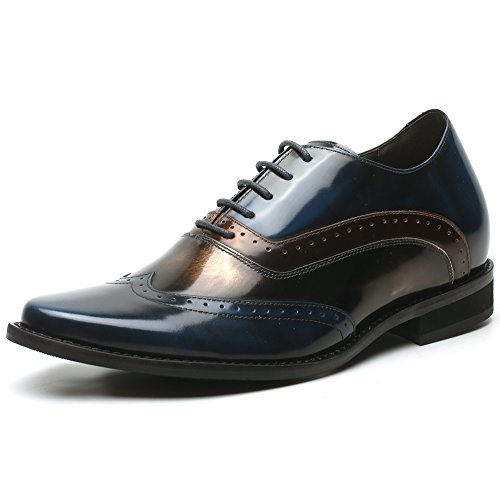 Chamaripa Mannen Lace Up Brogues, Blauw H81d38d062d Blue
