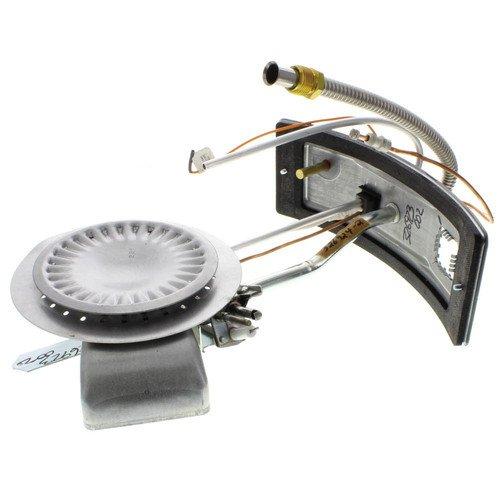 Complete Burner/Door Assembly, Natural Gas (HSI Control Valves)