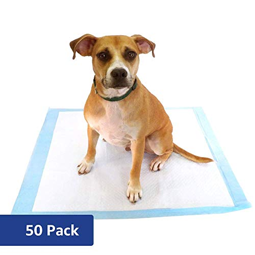 Amazon Brand - Solimo Puppy Pads, Extra Large Size, 50 Count