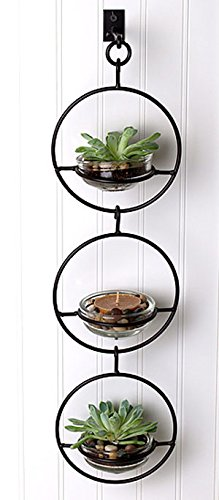Triple Metal and Glass Hanging Wall Terrarium/Candle Holder by In the Garden and More